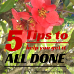 5 Tips to help you get it all done!