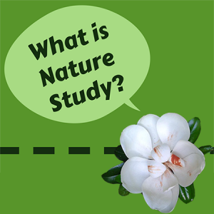 What Is Nature Study?