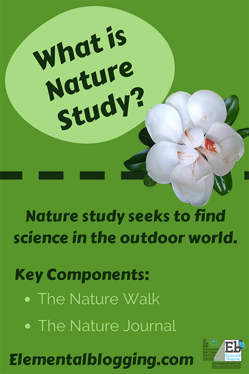 What is nature study? | Elemental Blogging