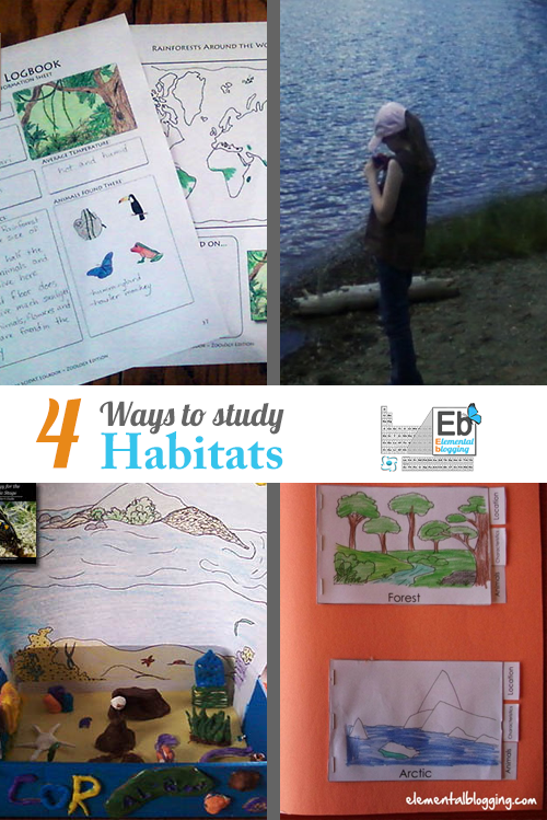 4 Ways to Study Habitats | Homeschool Science Corner