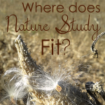 Where Does Nature Study Fit into Science Education?
