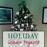 Science Corner: Holiday Science Projects