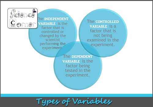 Variables Lesson - Lessons - Tes Teach