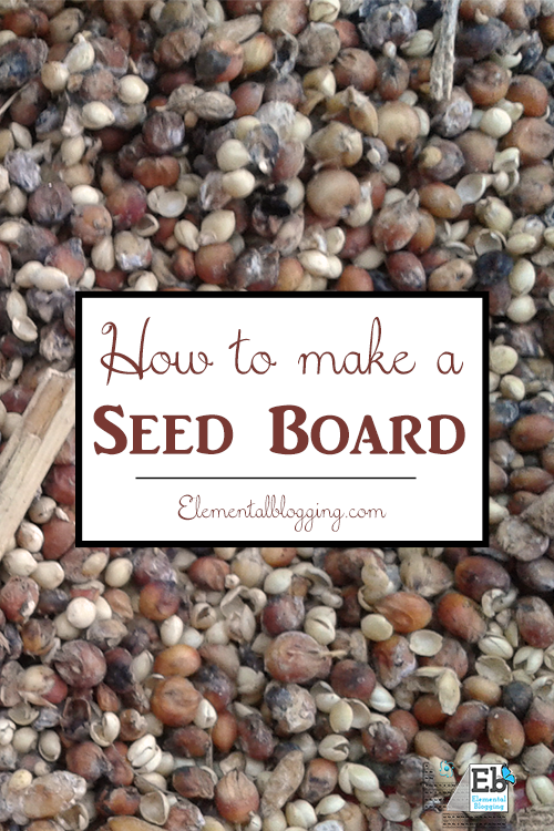 Follow these steps to make your own seed board, a perfect fall nature study project!