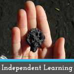 Working towards Independence in your Homeschool