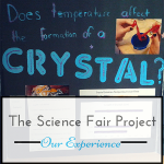 The Science Fair Project ~ Our Experience