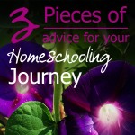3 Pieces of advice for your homeschooling journey