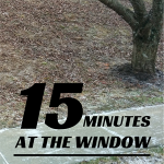15 Minutes at the Window {Winter Nature Study}