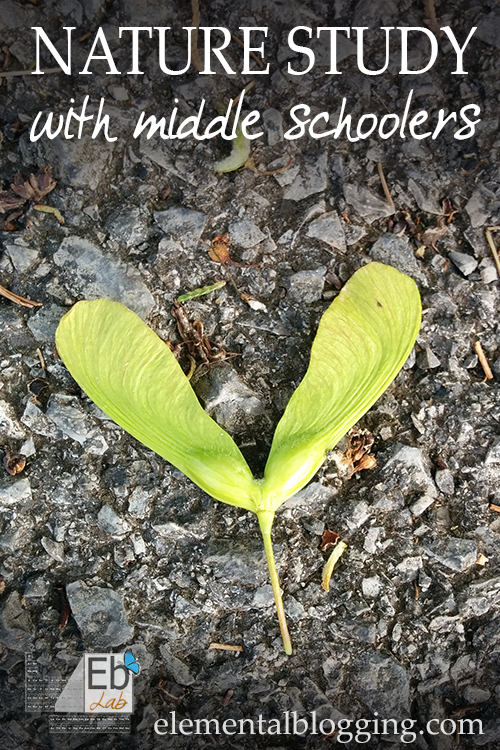 Nature Study with Middle Schoolers for Science | Elemental Blogging