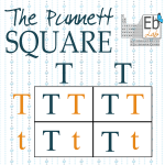 The Punnett Square