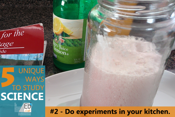 Baking soda, lemon juice, and more - raiding your kitchen for materials is one of the 5 unique ways you can study science!