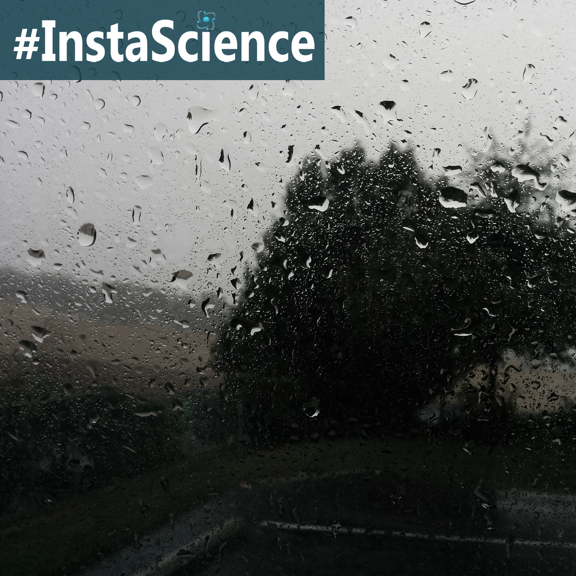 Learn about rain in an instant with these facts and activities!