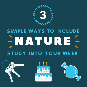 3 Simple ways to include nature study into your week