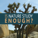 Is nature study enough for homeschool science? Your {not so} definitive answer