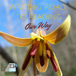 How We Use Writing Road to Reading