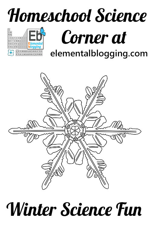 Have some winter science fun by making some snowflake crystals! - Elemental Blogging