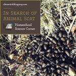 Science Corner: In Search of Animal Scat