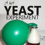 Science Corner: A Hot Yeast Experiment