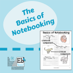 The Basics of Notebooking