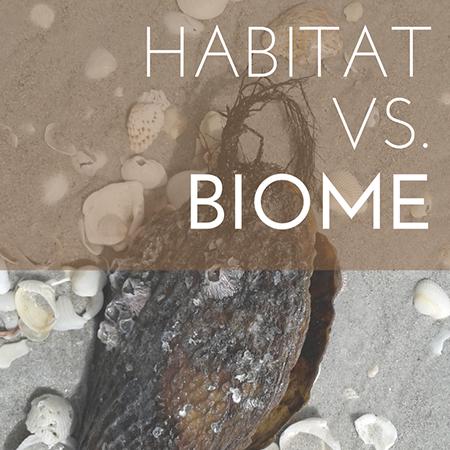 Habitat vs. Biome feature