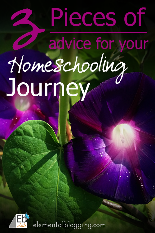 3 Pieces of advice for your homeschooling journey from Paige at Elemental blogging
