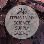 26 Items you can find in my science supply cabinet