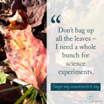 Save the leaves for science!