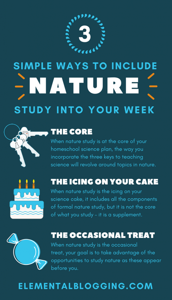 Wondering how to included nature study into your homeschool? These 3 simple ways will help.