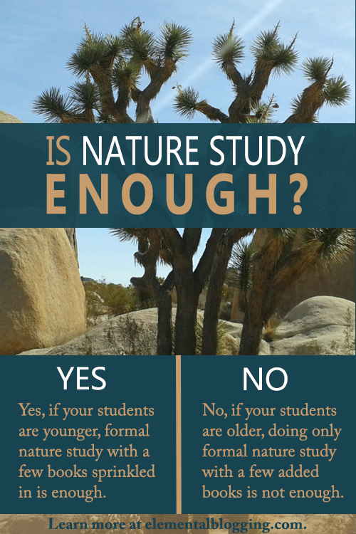 Have you ever wondered - is nature study enough? Here are the two answers to that question along with tips to figure out which one is right for your homeschool.