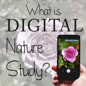 What do you get when Google and Charlotte Mason collide? Digital Nature Study!